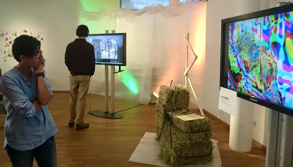 Besucher schauen sich Exponate der Ausstellung an