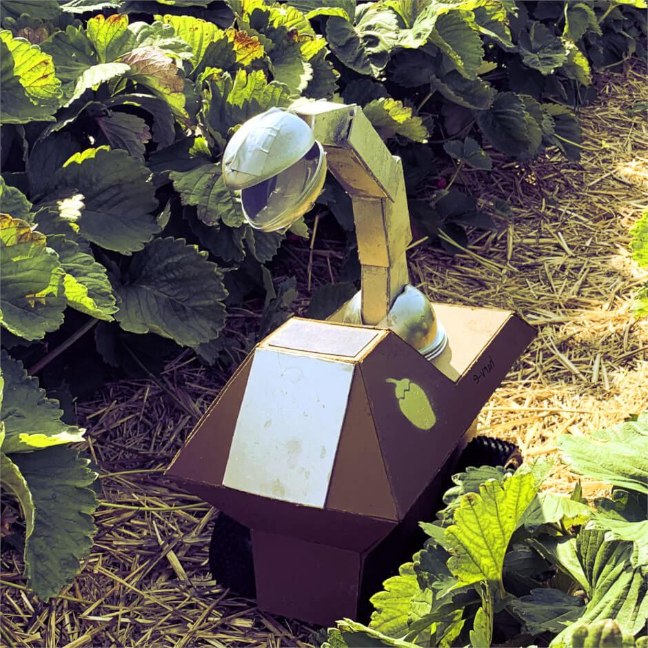 Gebastelter Roboter von harv-e im Feld