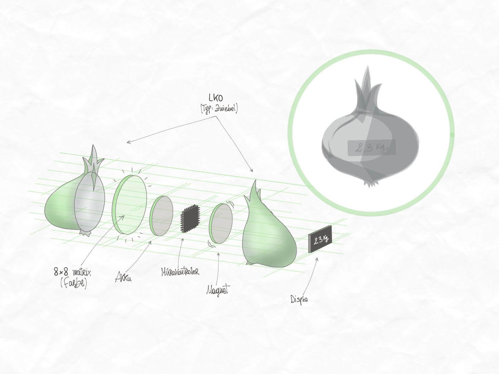 Der Aufbau des Lebensmittelkontrollobjekts